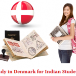 Why Should Foreign Students Prefer to Study in Denmark